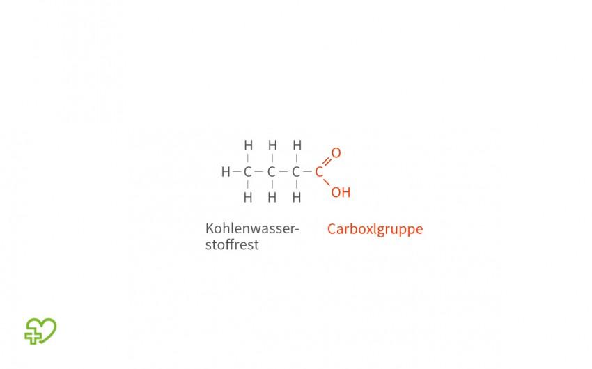 Die chemische Grundstruktur einer Fettsäure.