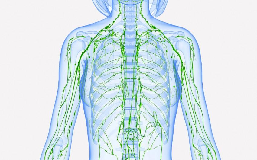 Rasieren durch unter knoten achsel Geschwollene Lymphknoten