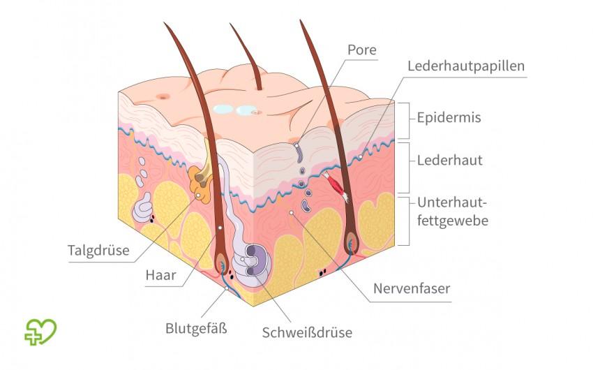 Wie oft lymphdrainage bei lipödem