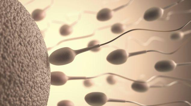 Sperma schwanger ohne Schwanger durch
