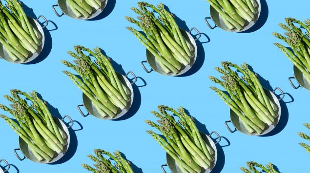 Man sieht viele Teller mit grünen Spargelstangen auf blauem Hintergrund