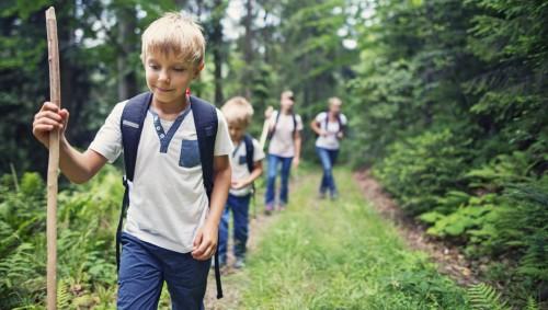 Eltern und zwei Jungen gehen im Wald spazieren.