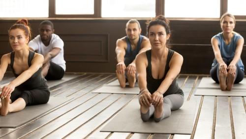 Mehrere Personen beim Yoga.